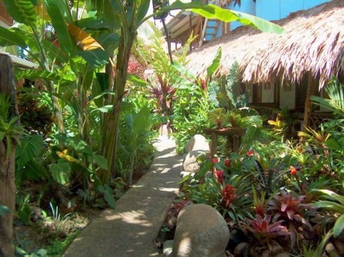 Kaya's Place Beachfront Hotel Share