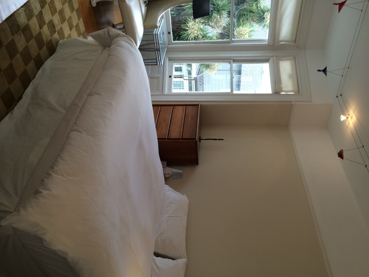 Large sunny Pacific Heights bedroom