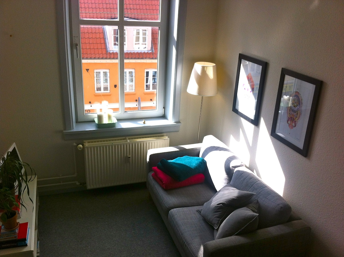Lovely apartment in the centrum