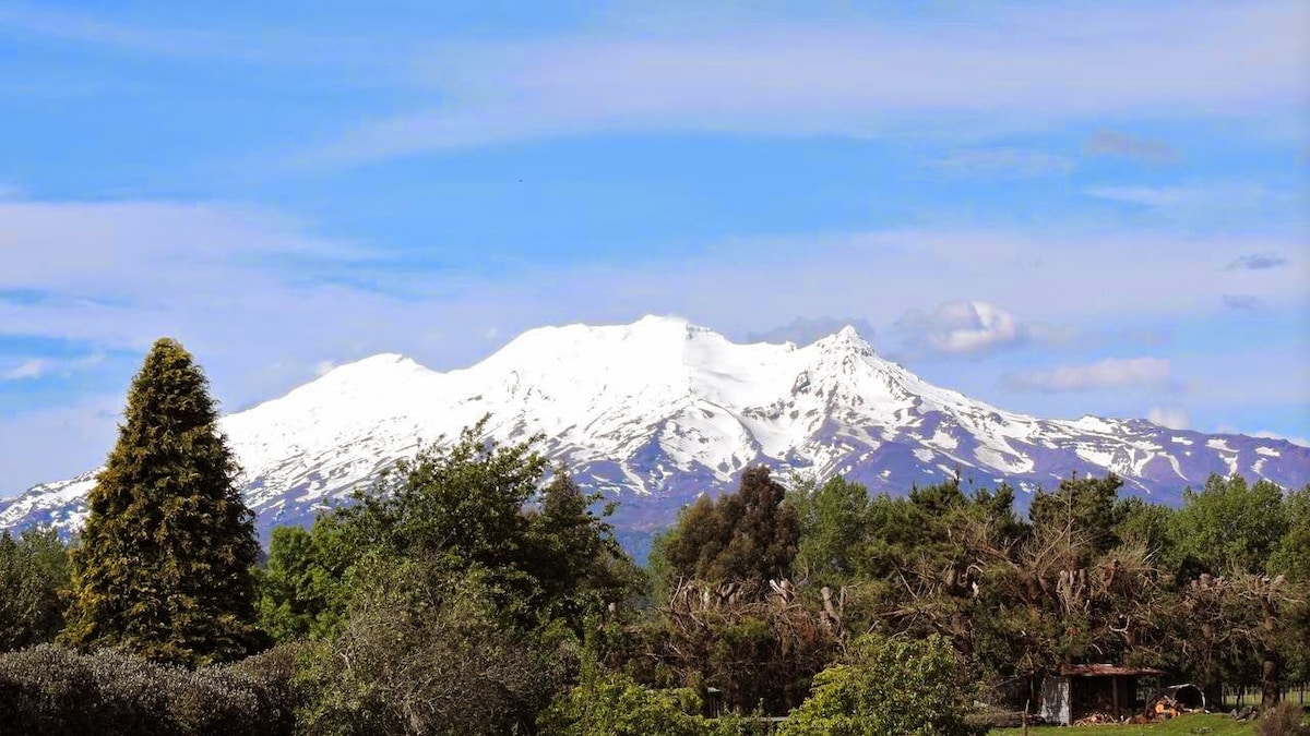 Ohakune Mountain Retreat-sngle room