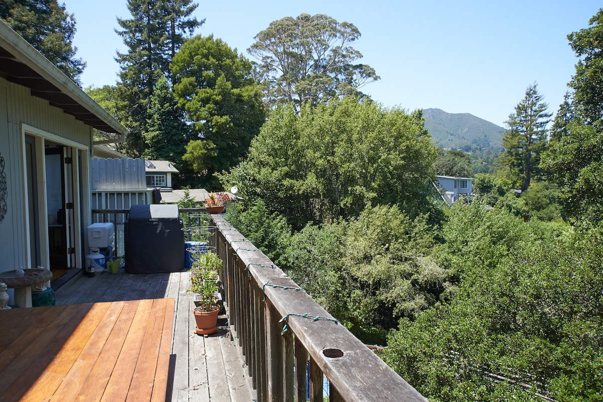 Walk to the depot or hike Mt Tam!