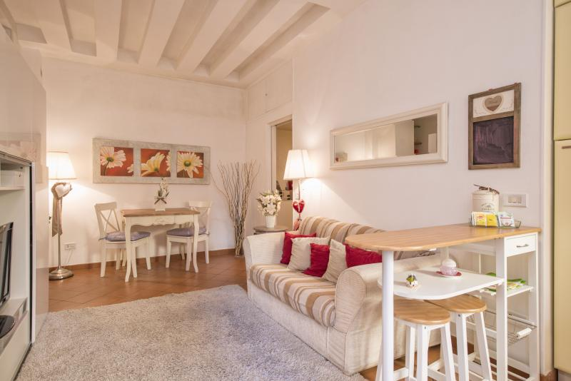Entire lovely apartment in Rome