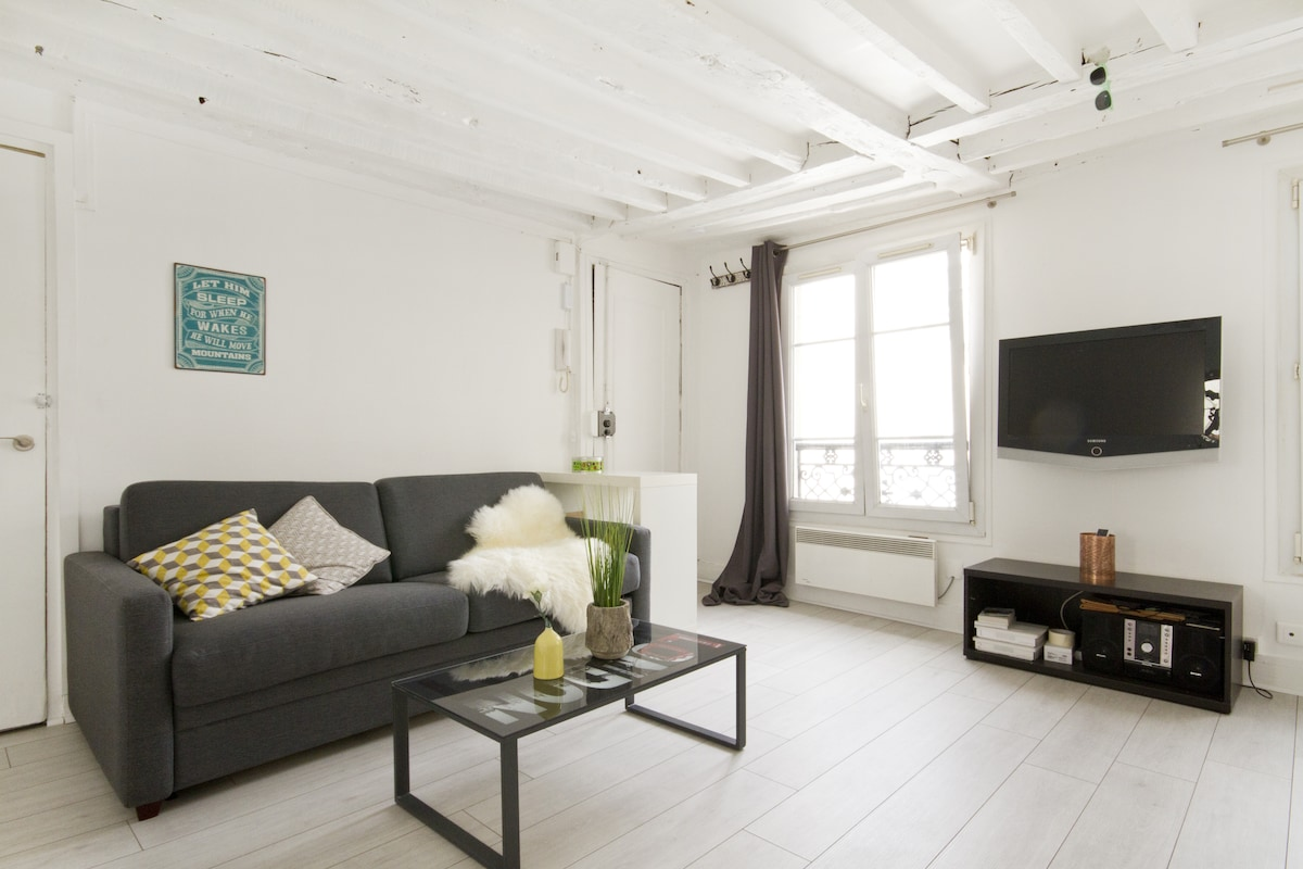 Lovely flat in central Paris