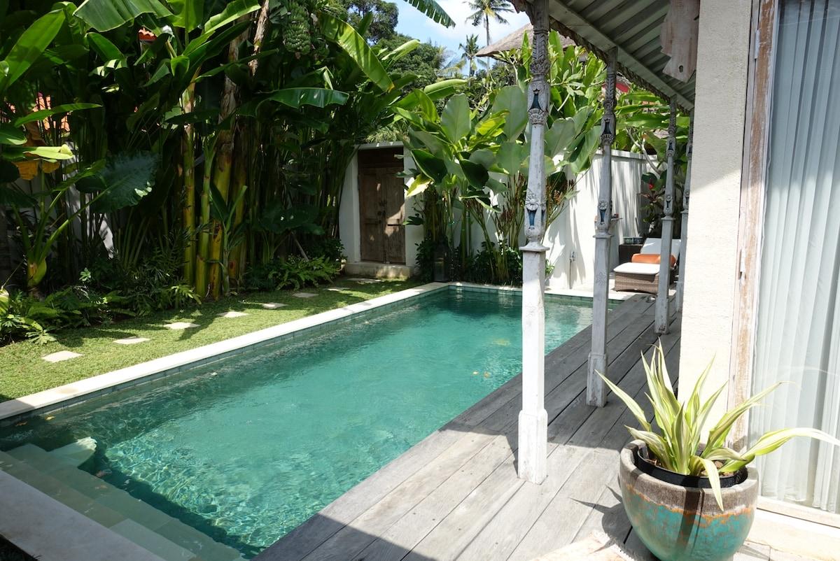 Clarashiva villa , Seminyak,Bali