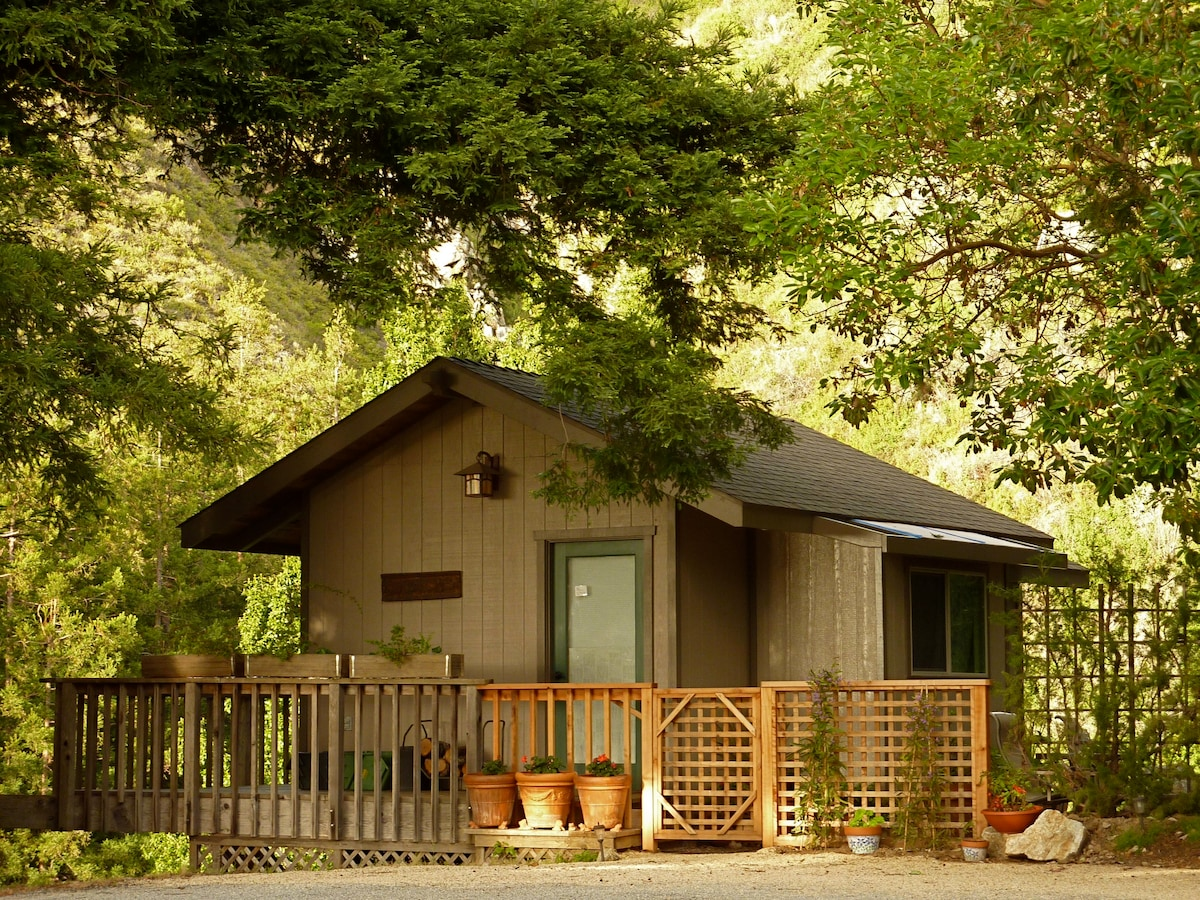 Little Gem Cabin: Private glen terrace and wrap around deck, 360 views!