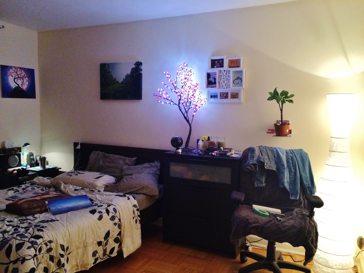Beautiful, spacious private room