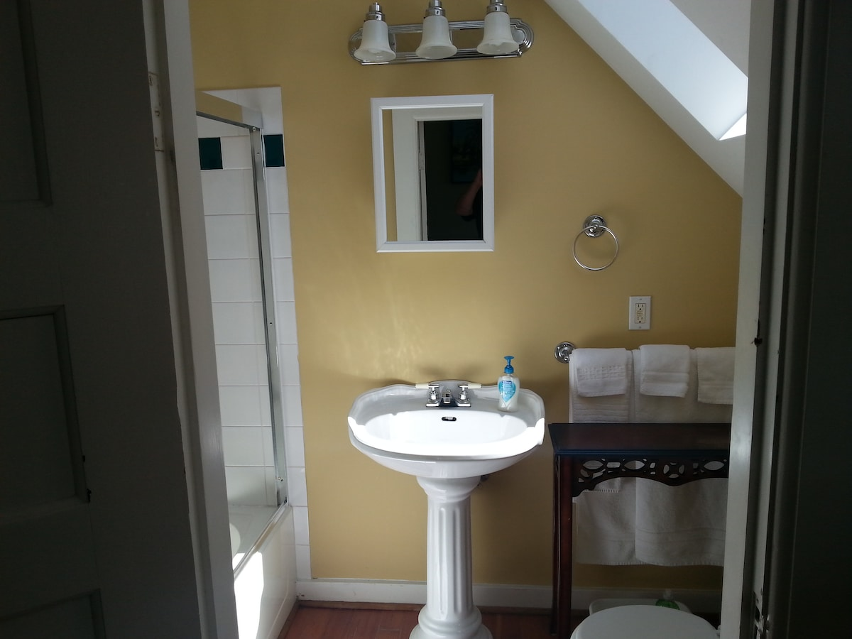 Character Suite In Victorian Home 2