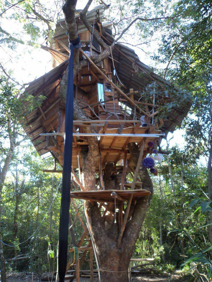 Casa da Árvore - Vale do Capão