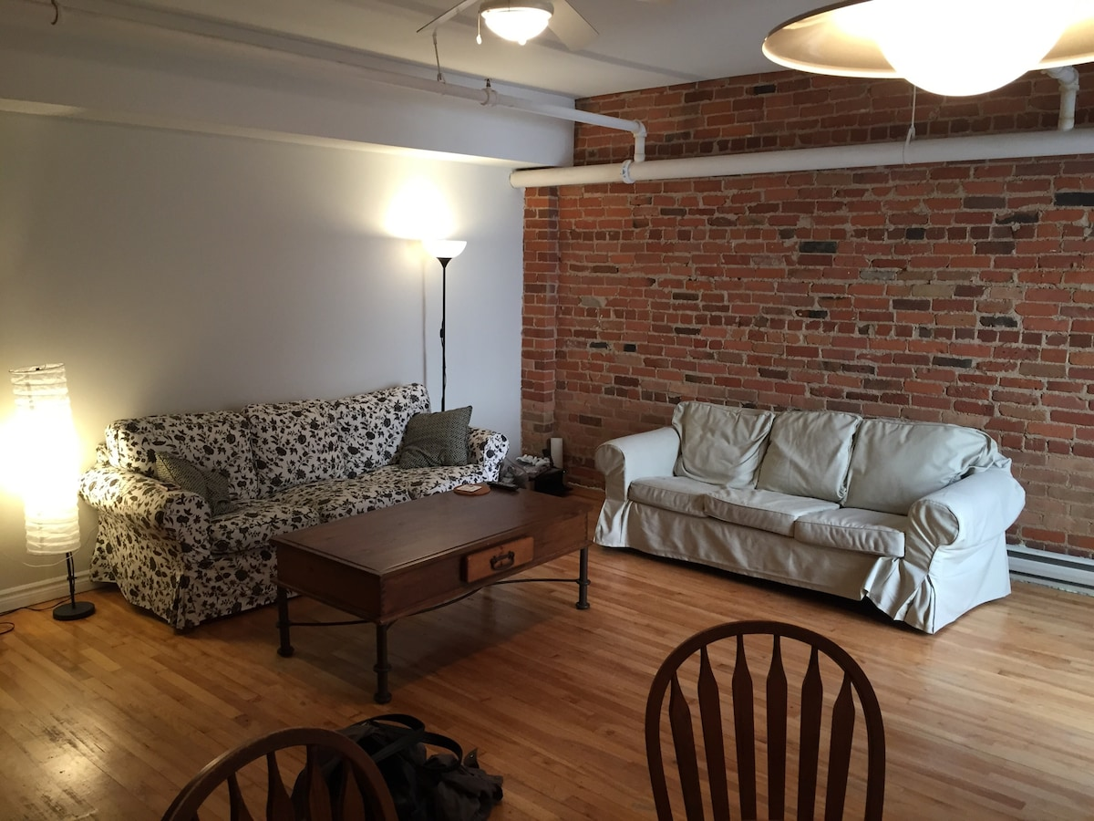 Modern Downtown Exposed Brick Apt