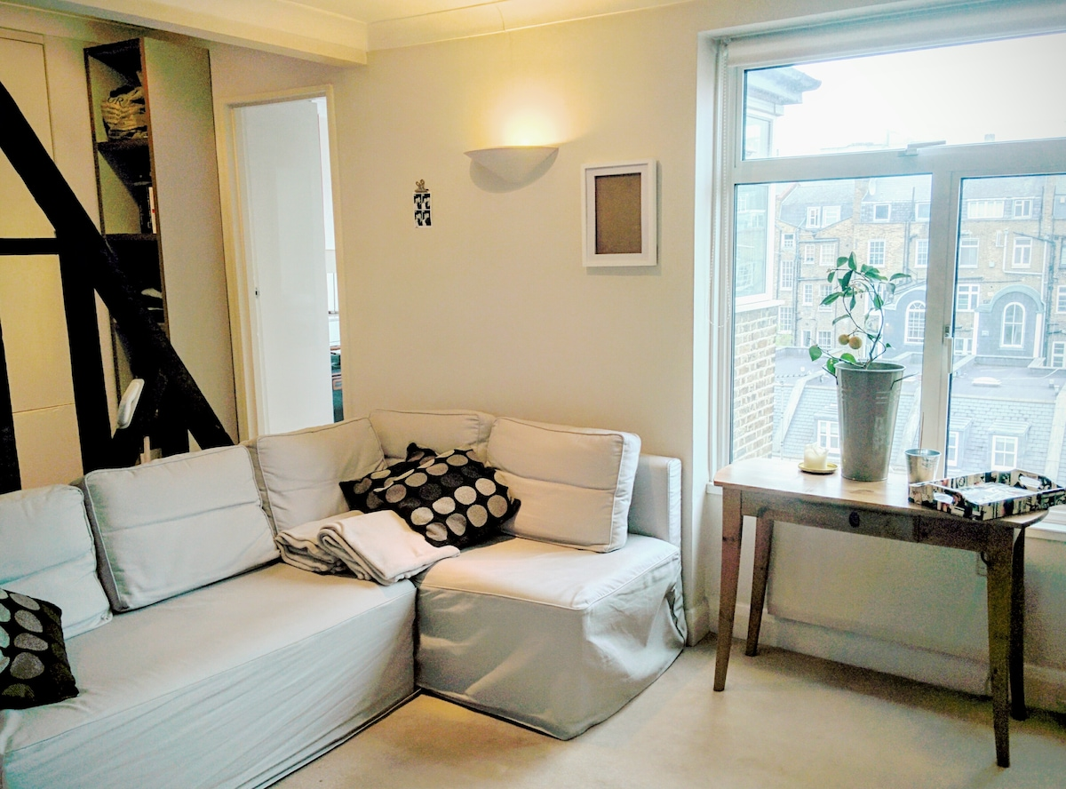 Vacation Flat in Central London