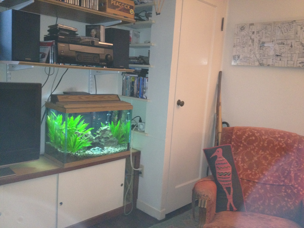 You'll be sharing the room with a peaceful, relaxing aquarium filled with fish and live plants...