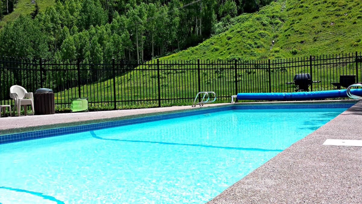 Telluride Condo Retreat - Pool!