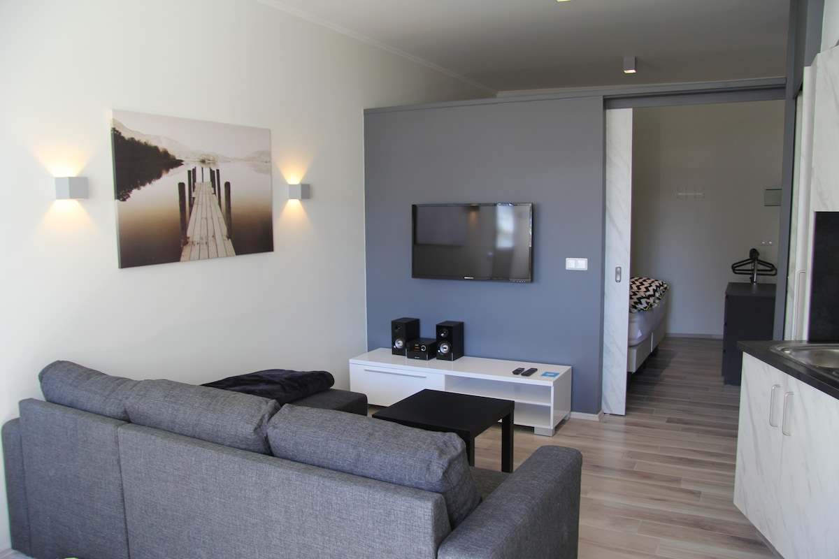 Modern apartment, downtown Akureyri