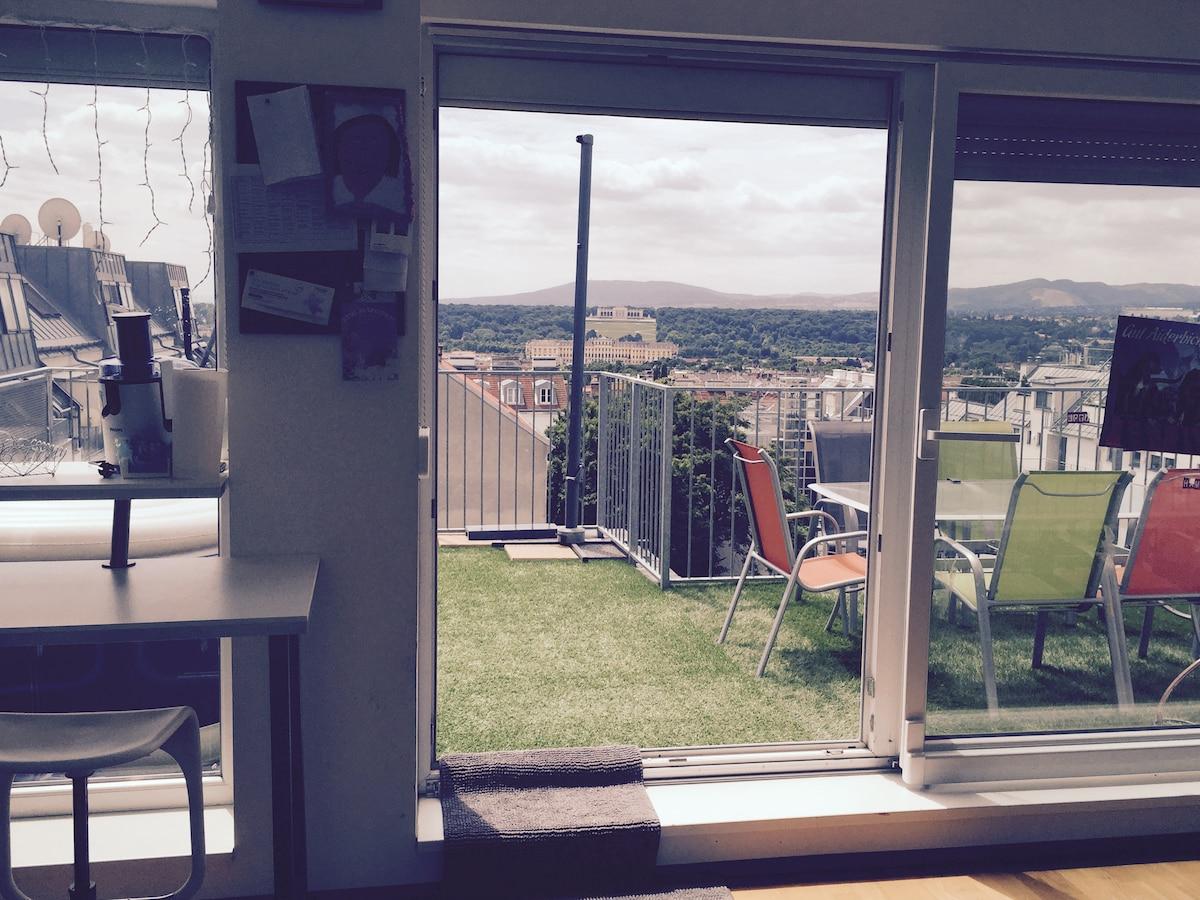 Big flat with Schönbrunn panorama