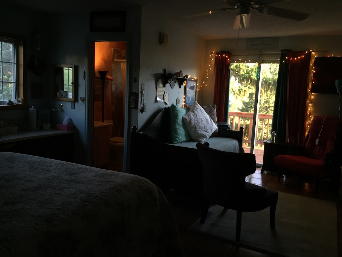 Entering main room with queen bed & twin