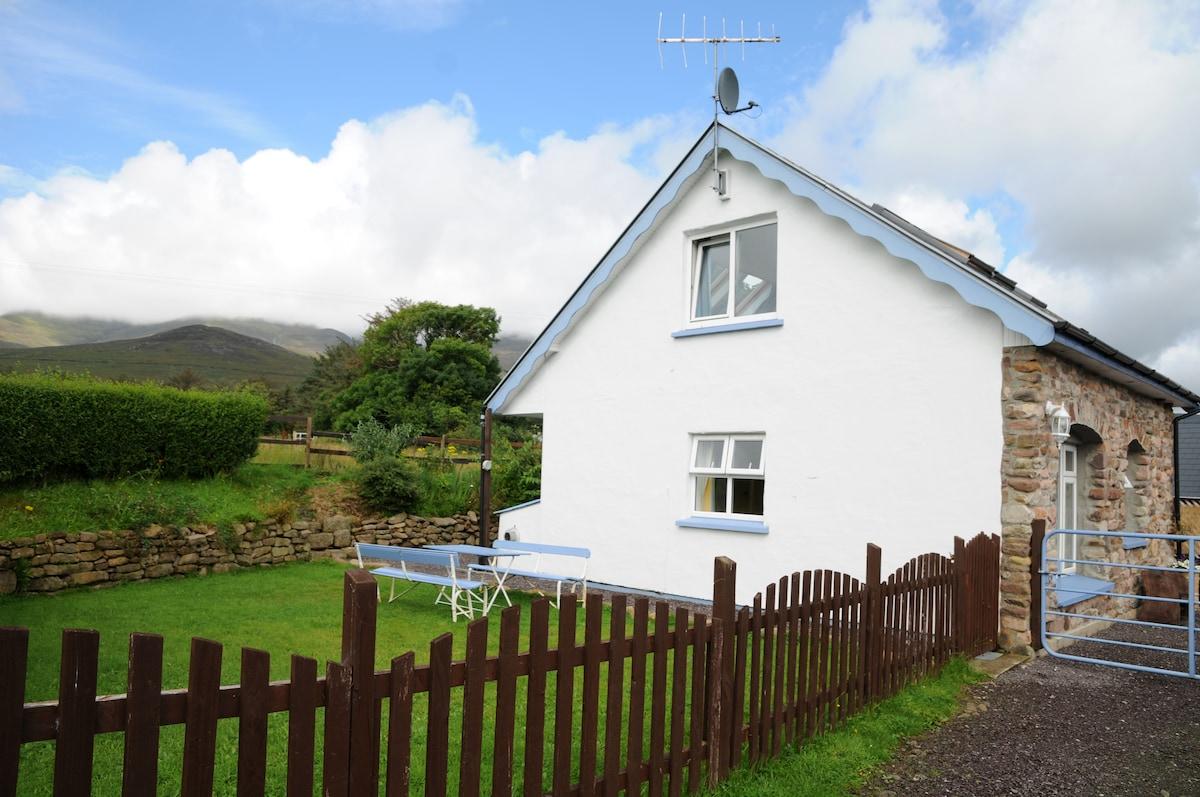Annie's Cottage garden