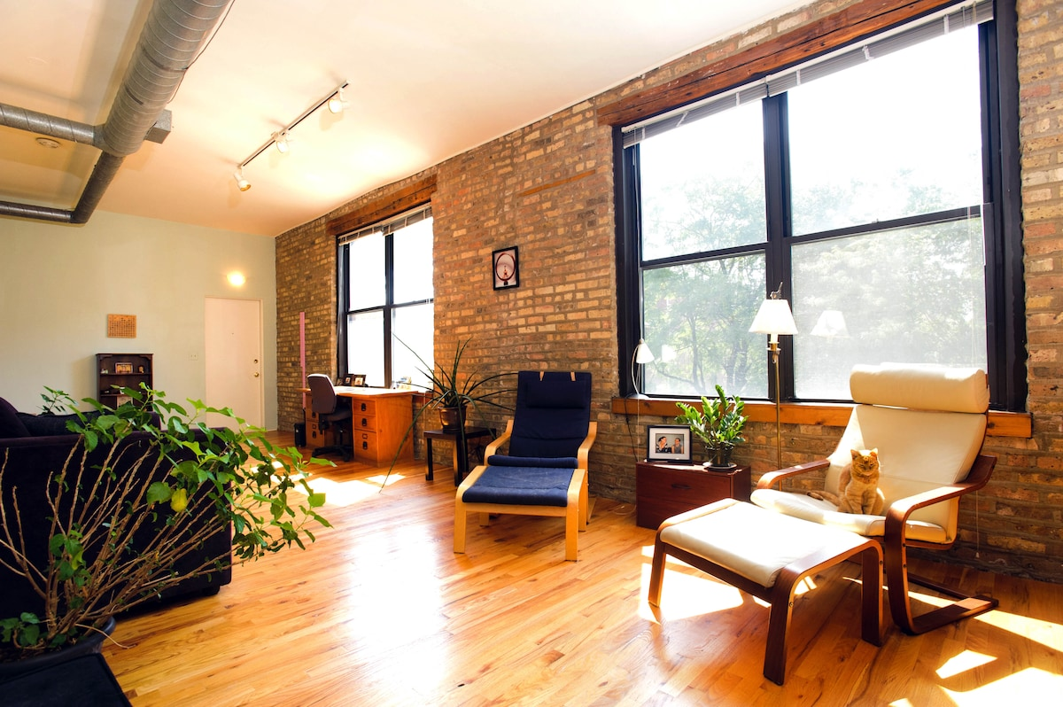 Apartment in the city of Chicago