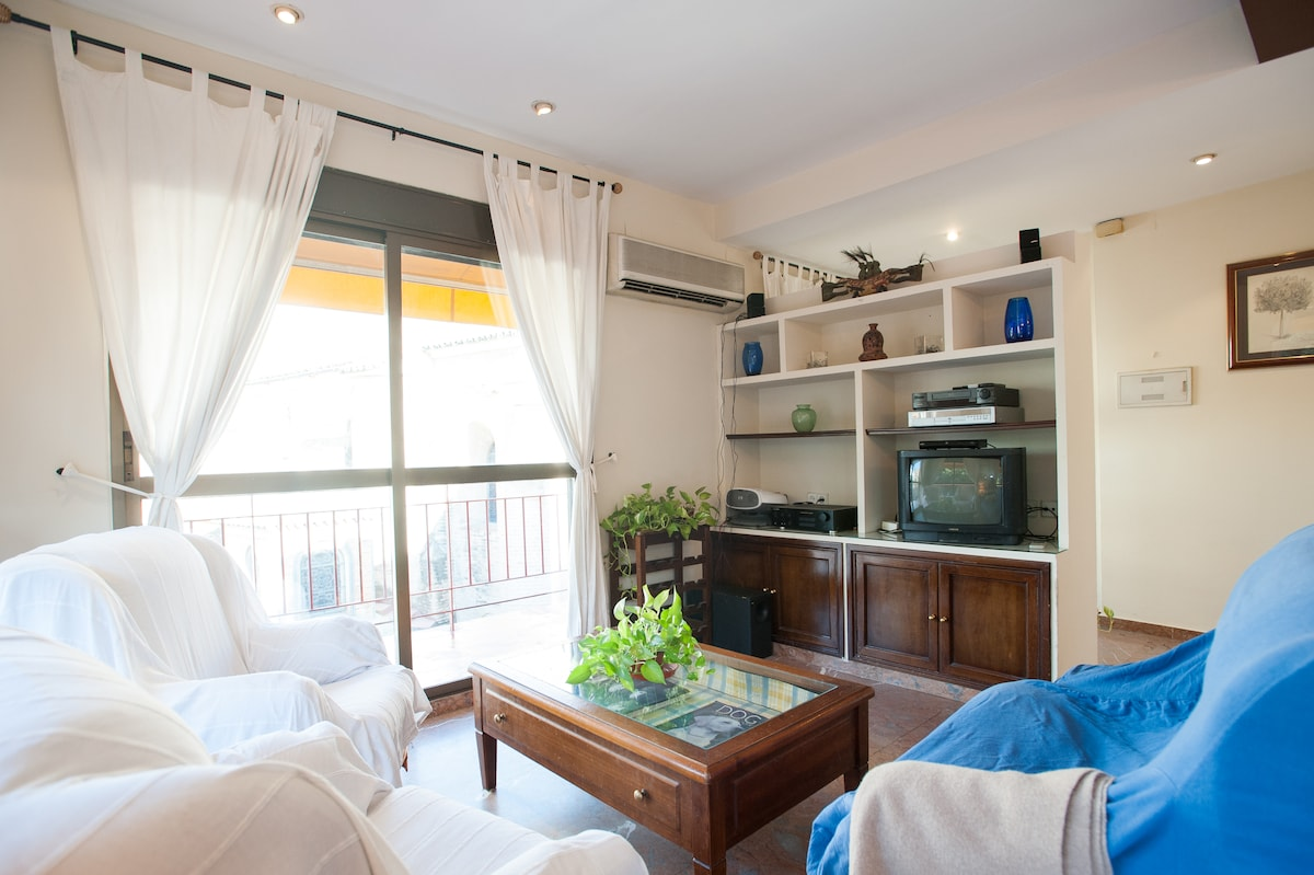 Room+priv. bath Center of Seville!