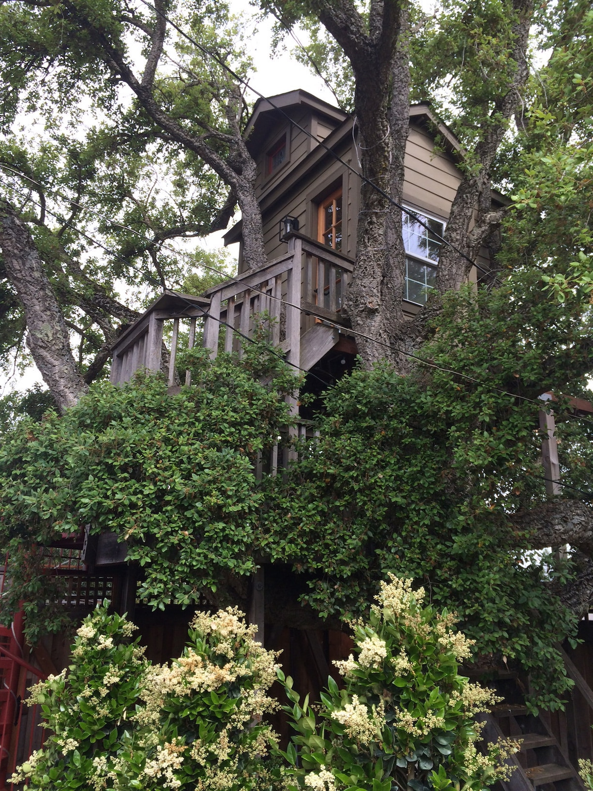 Treehouse in Cherry Valley