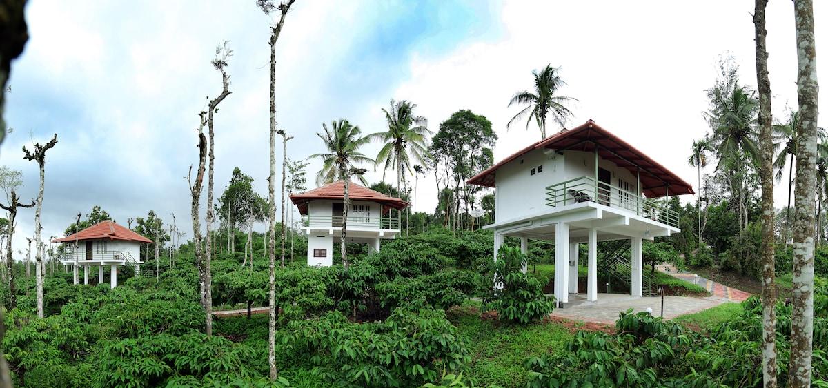 The Suvistara Wayanad
