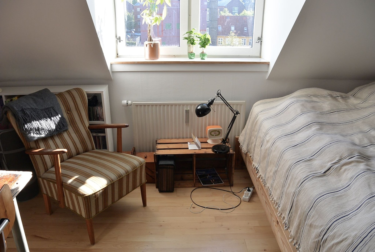 Room in the center of Nørrebro!