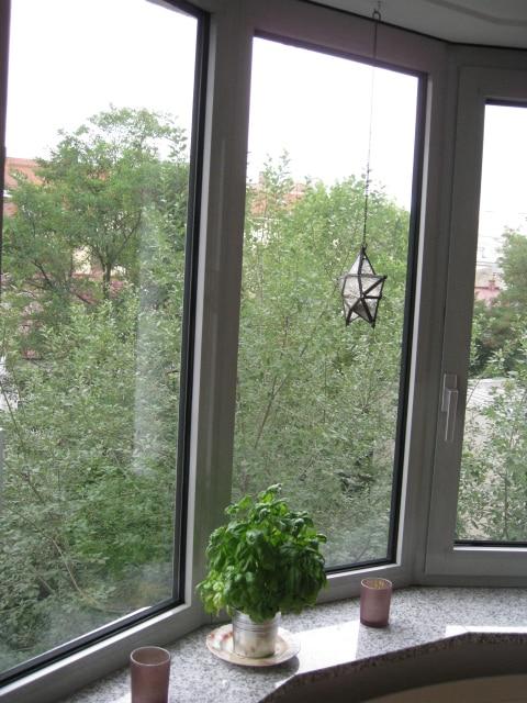 Blick aus der Küche in den ruhigen grünen Innenhof