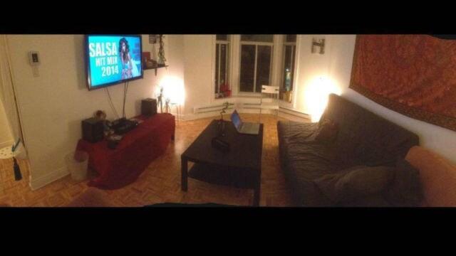 BIG appartement Plateau Mont Royal