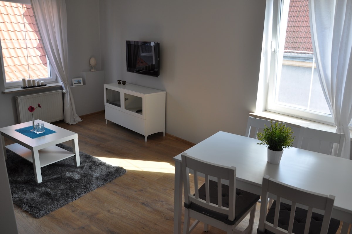 Apartment in City Center- Old Town