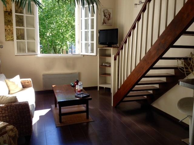 Appartement Versailles château 35M2