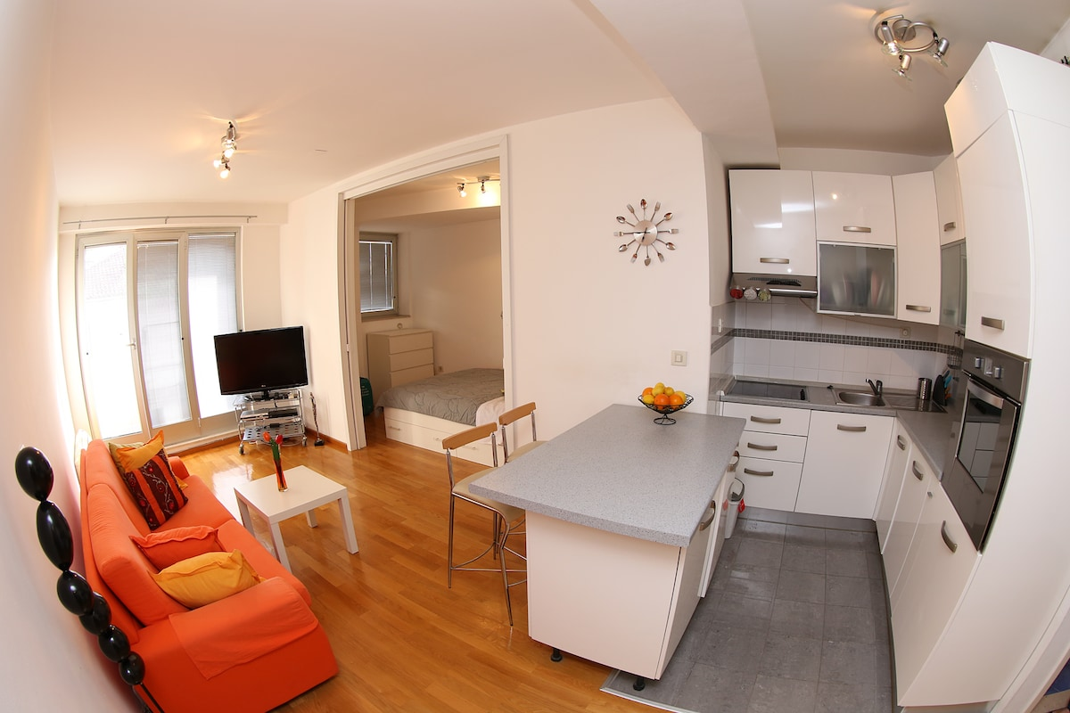 Cosy modern apartment in old town