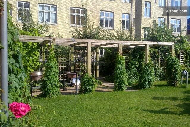 Communal garden.