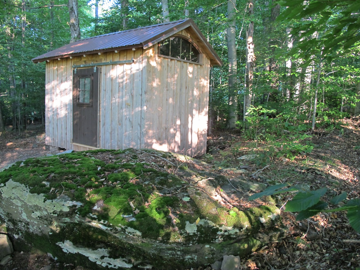East view, cabin in beech and maple trees