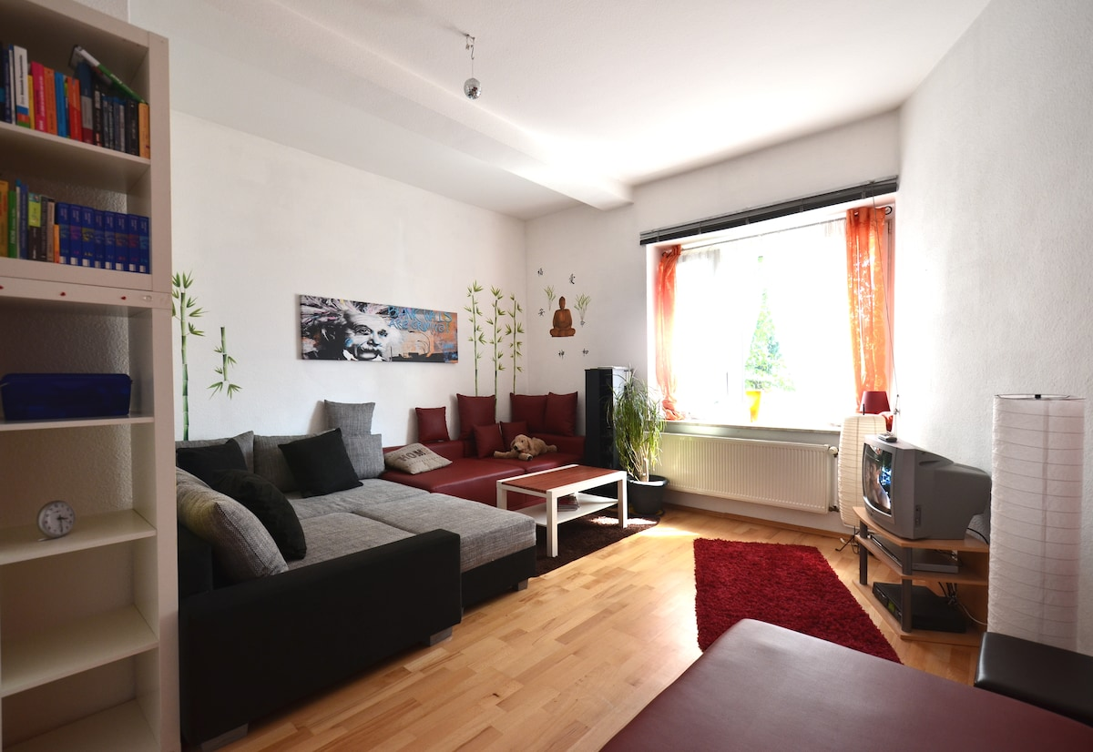 Central and cozy, huge appartment