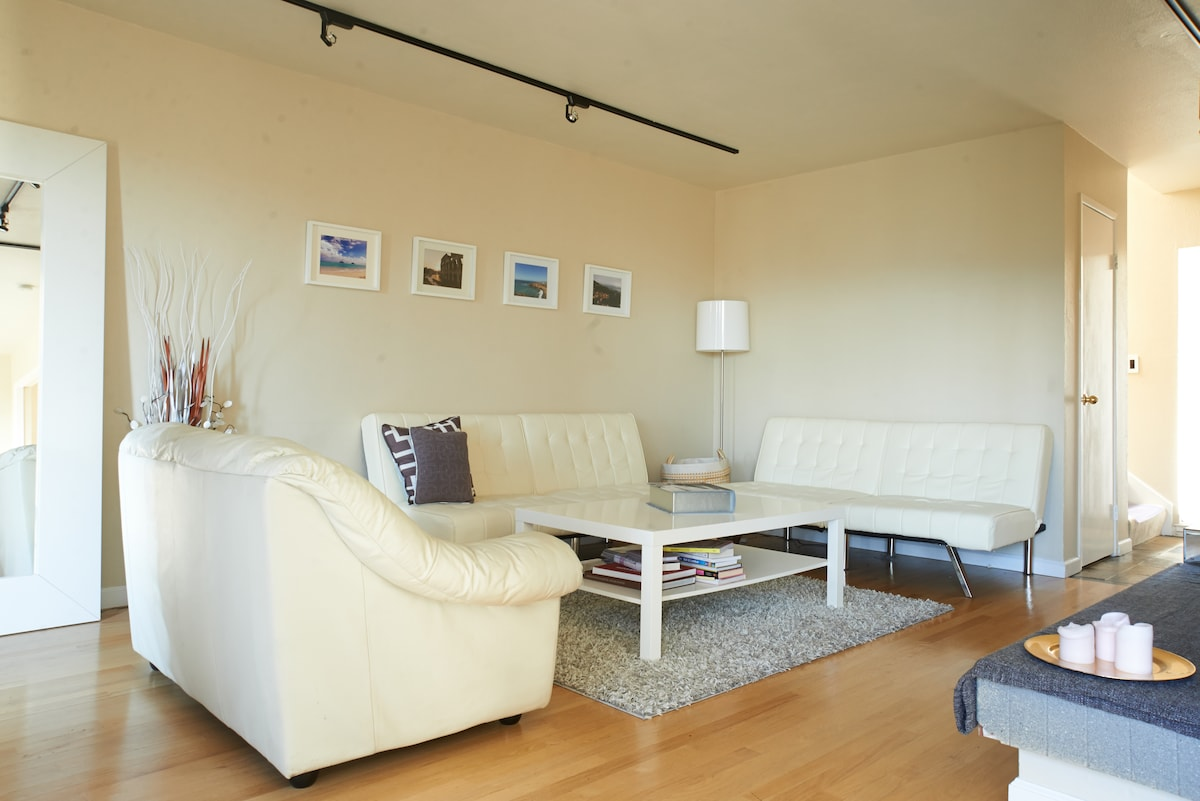 Large, Modern Room Right Outside SF