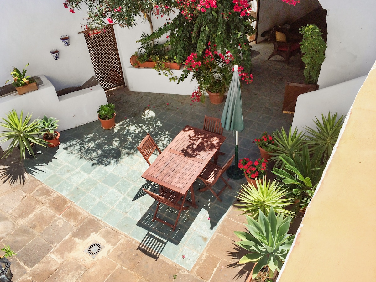 Roomy cottage with sunny courtyard
