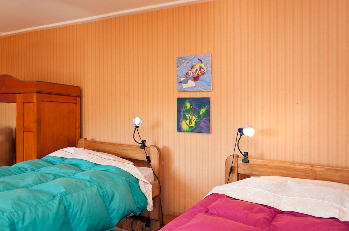 Illuminated Mixed Dorm with 6 beds