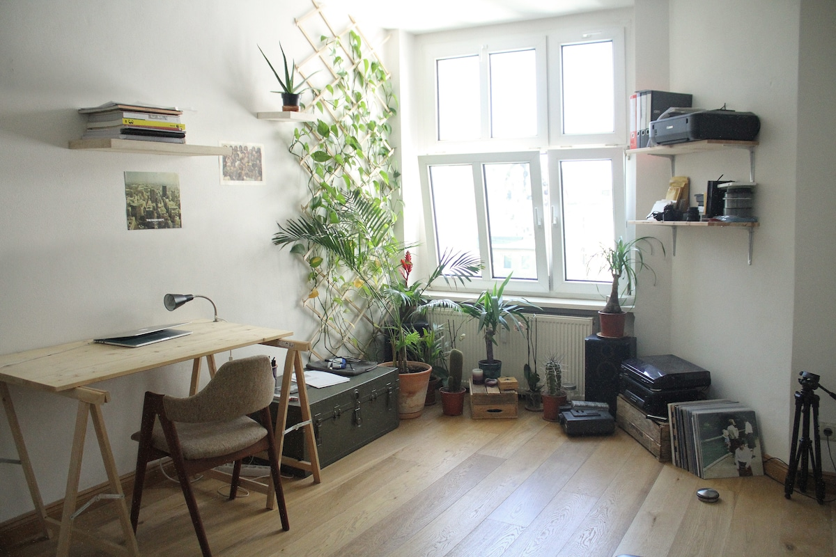 Sunny large studio with terrace