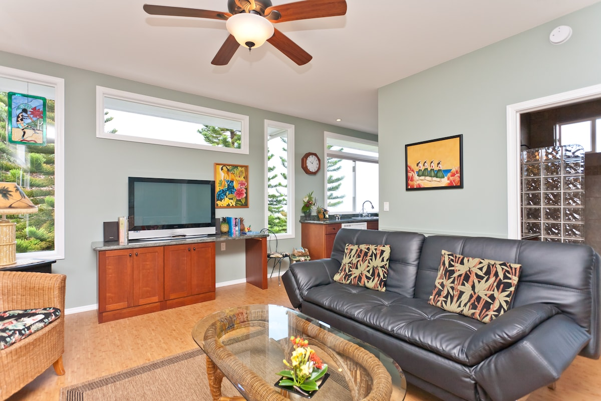 """Living area with 42"""" HDTV, DVD & Stereo."""
