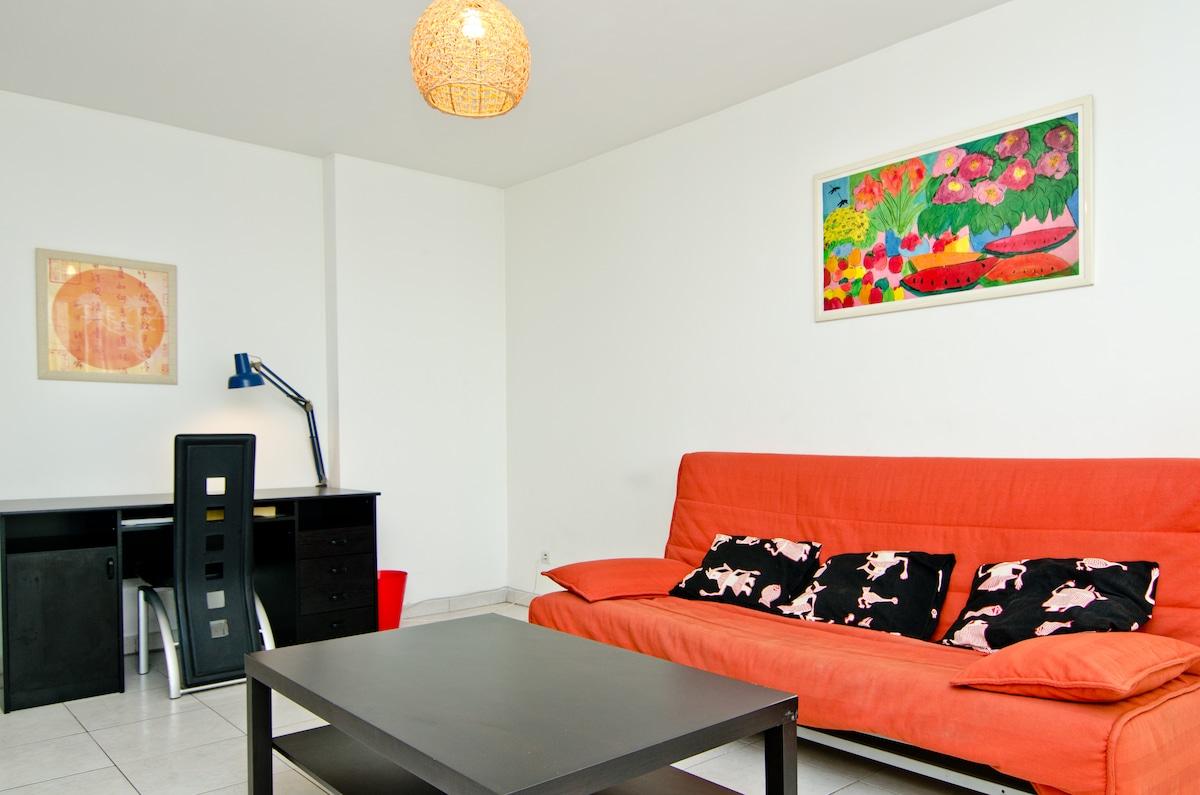 Salon avec canapé convertible et bureau
