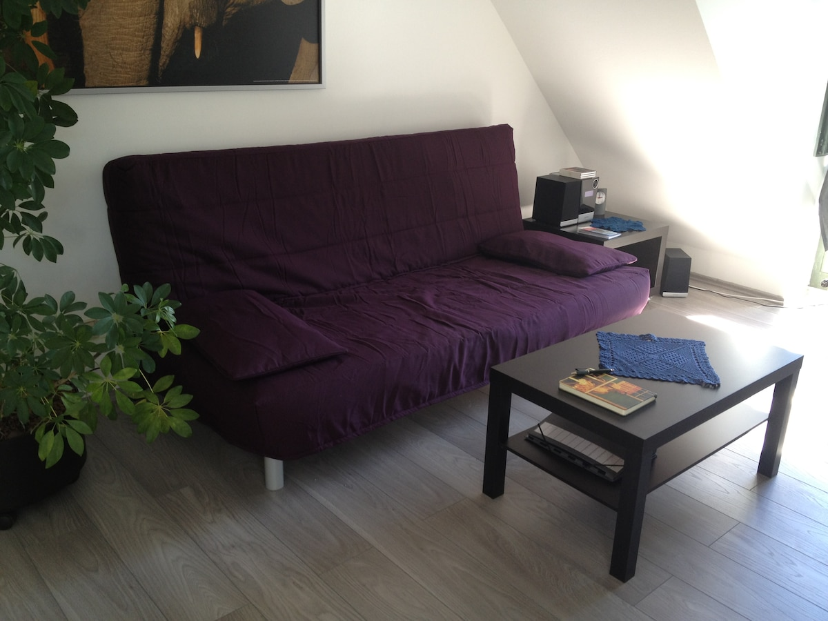 Pullout-Sofabed in the livingroom - corfortable for 2 guests to sleep - replaced the blue sofa recently