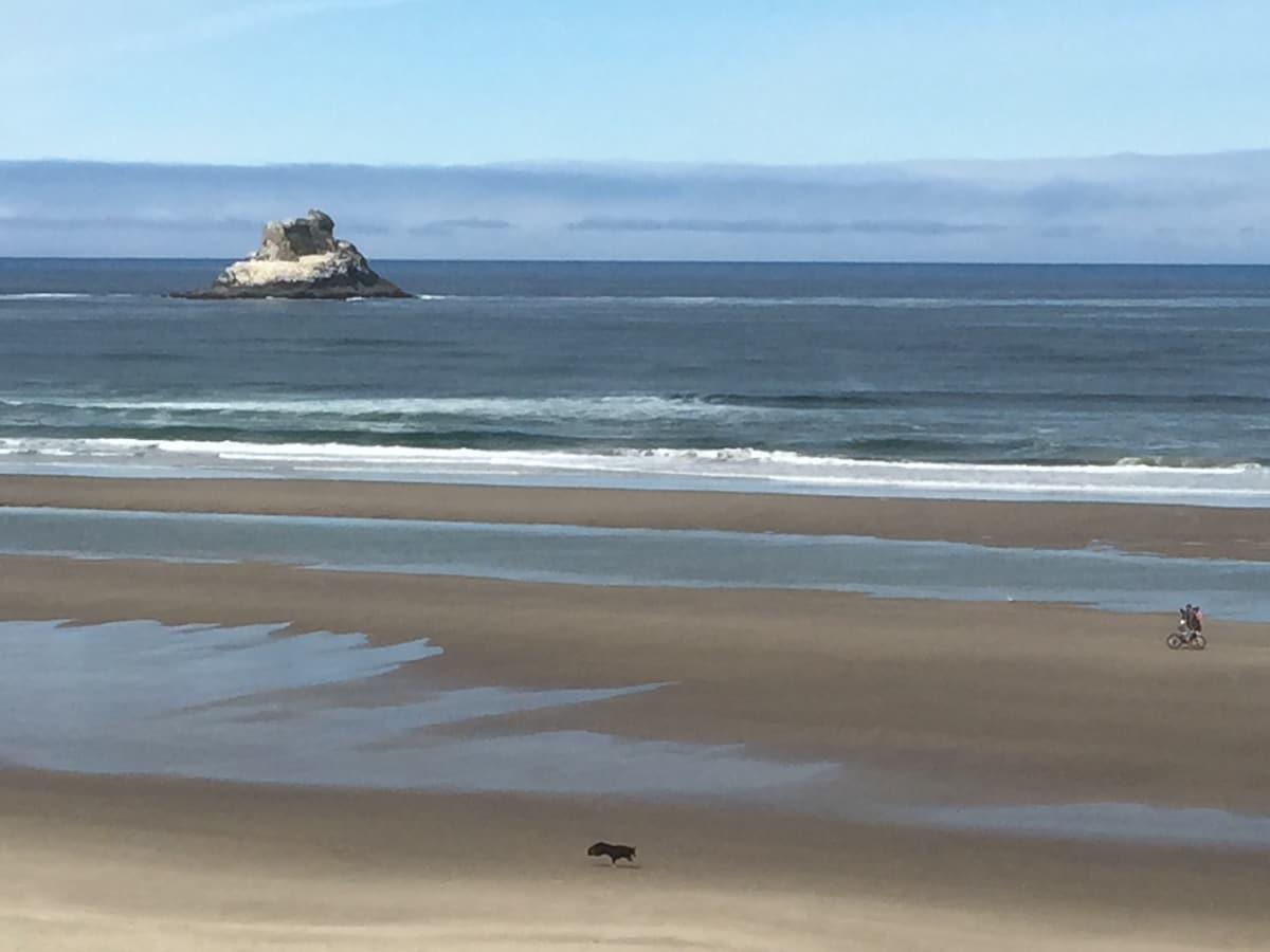 Coastal peace and tranquility