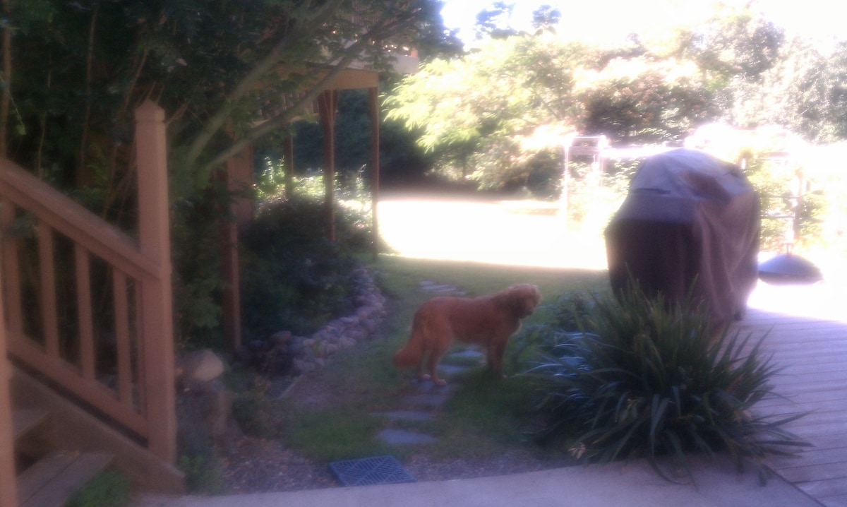 Path to private entrance, Layla the greeter.