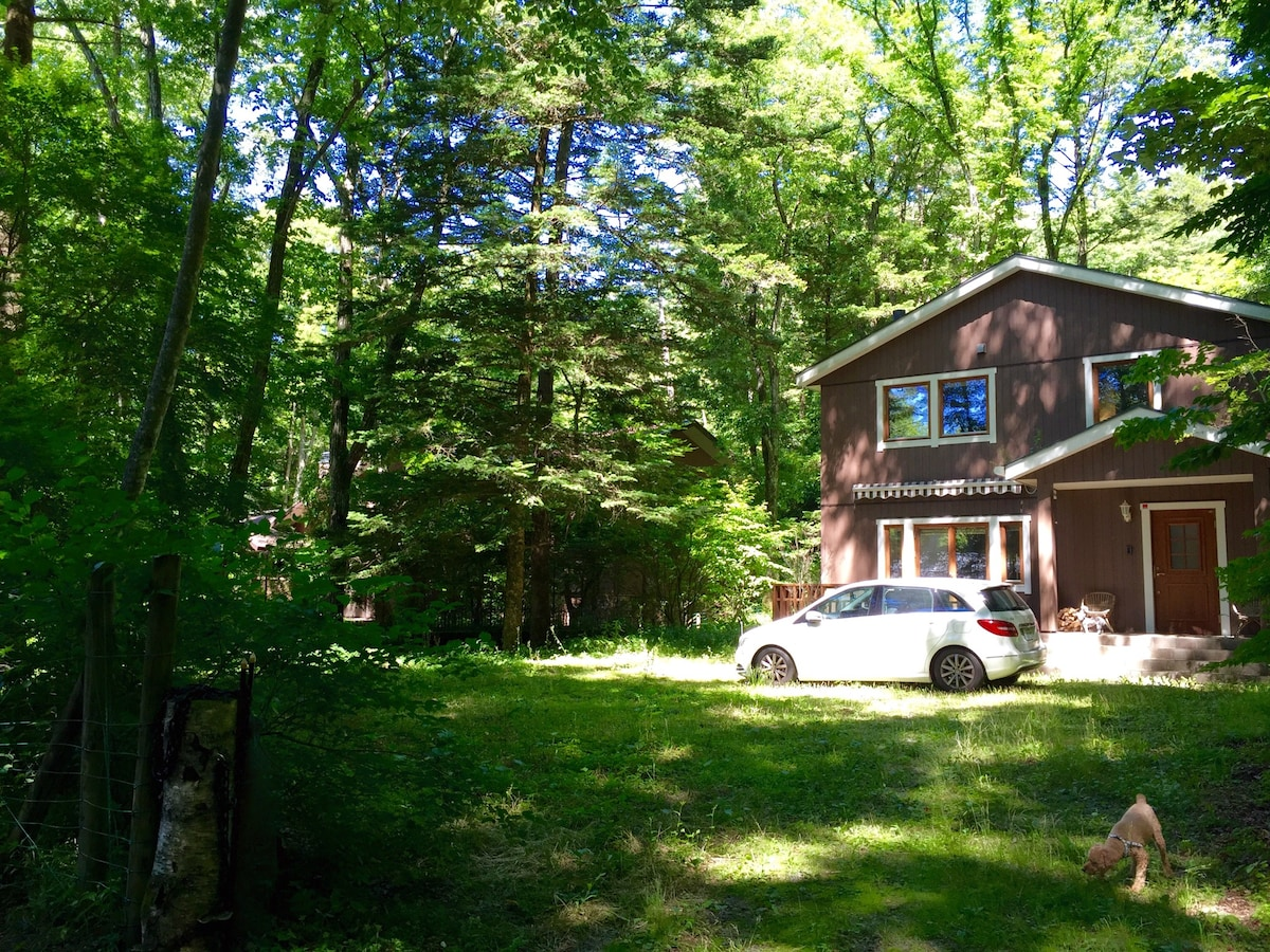 stay in the woods of Karuizawa