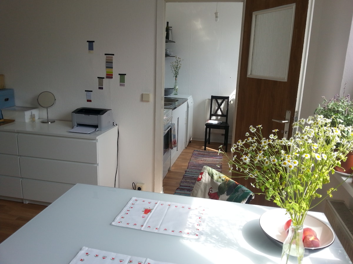 central clean one room apartment