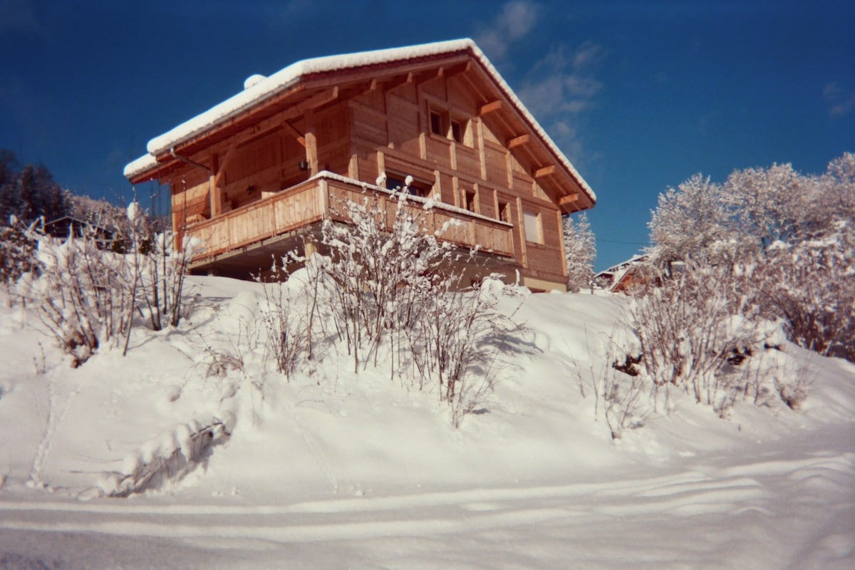 Appt in Chalet - view on Mont Blanc
