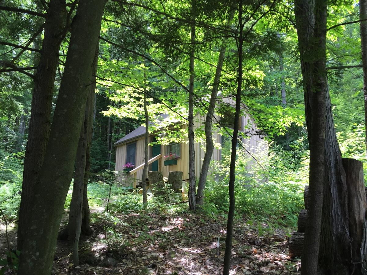 Enchanting rustic mountain cabin