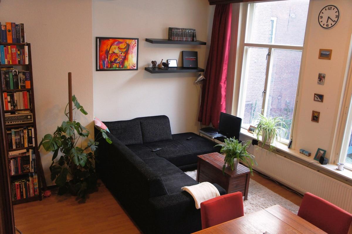 Spacious city center apartment