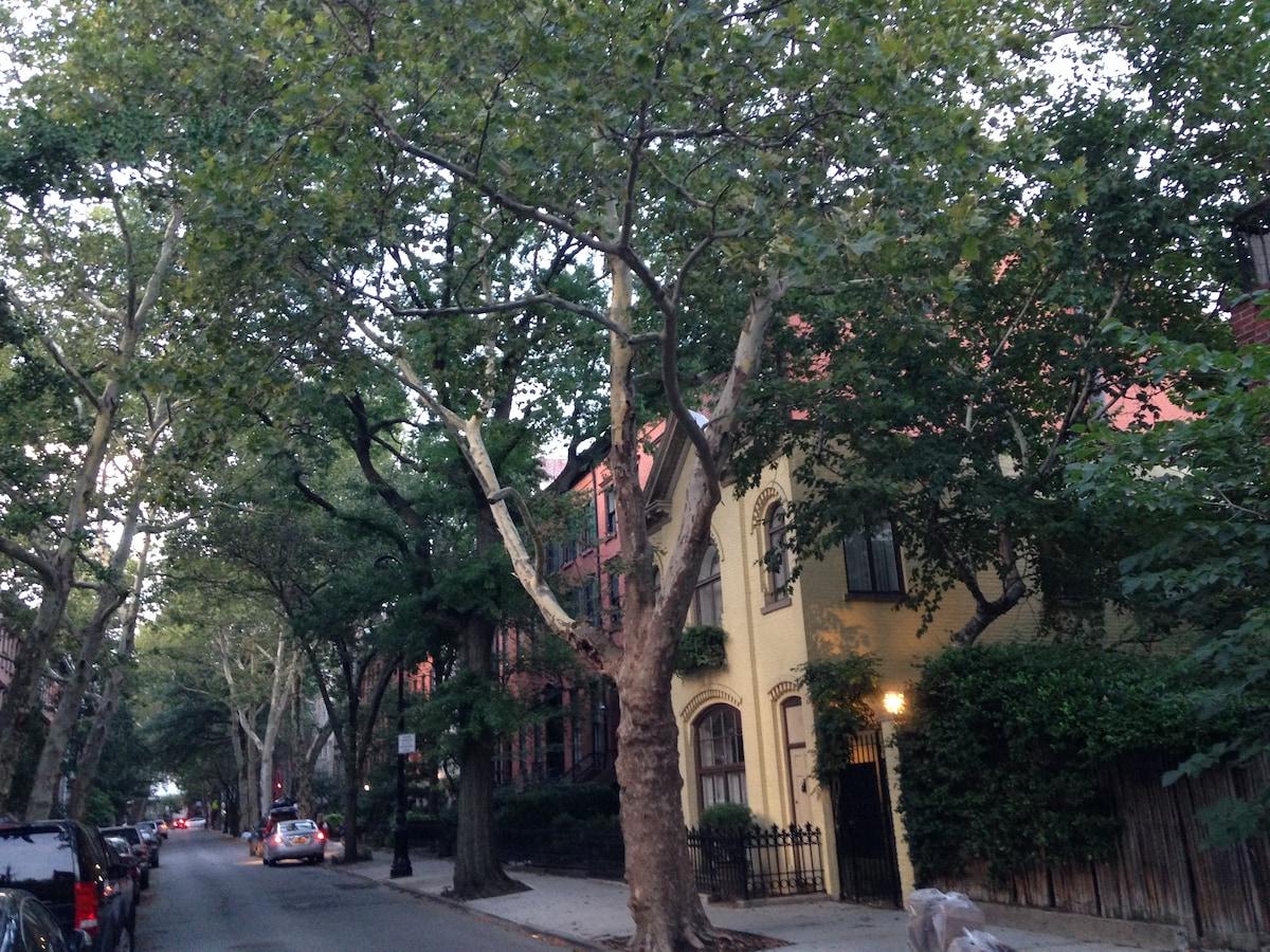 Beautiful Brooklyn Heights Loft