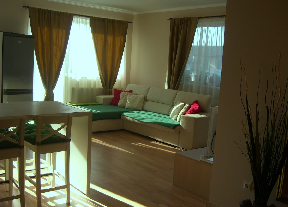 livingroom - nice and confortable
