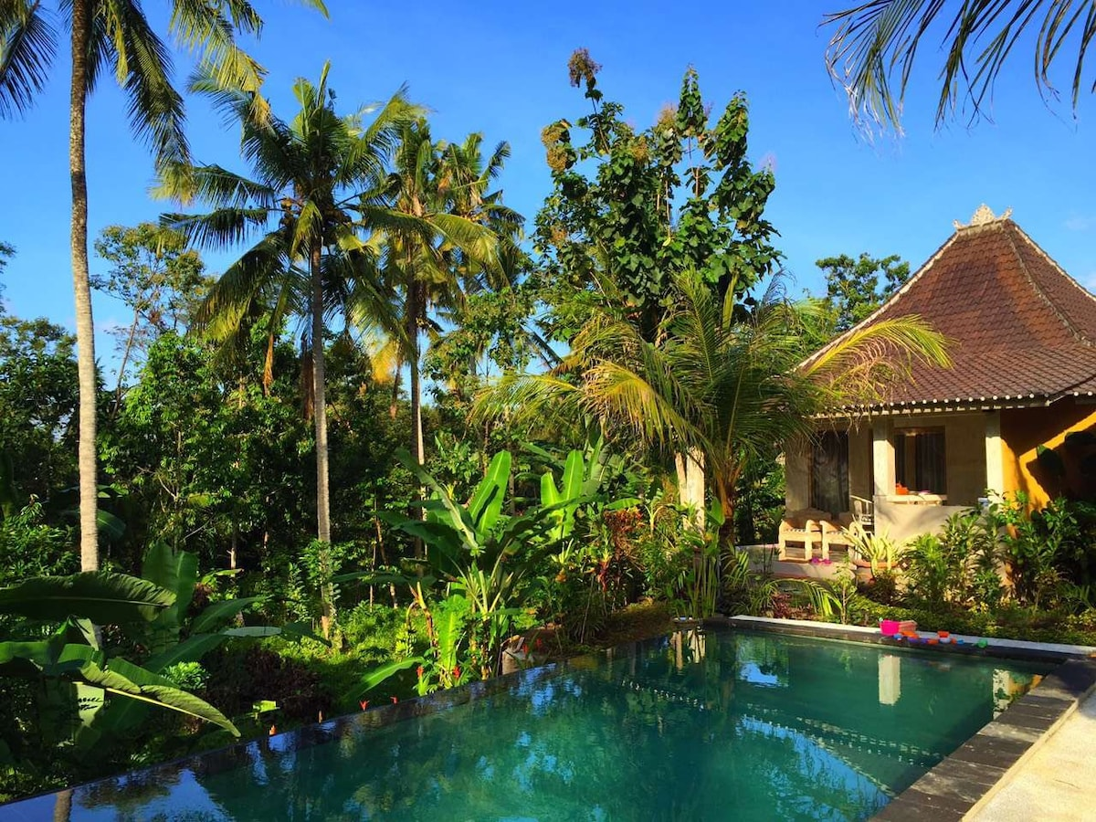 New Villa with pool/Jungle view